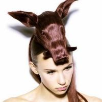 Exotic hairstyle